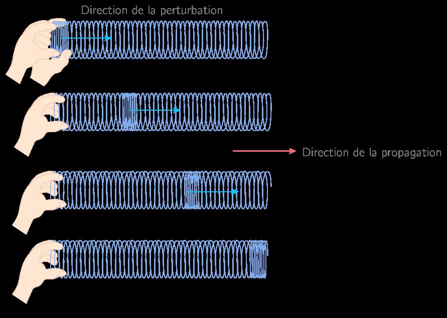 Propagation longitudinale d'une onde