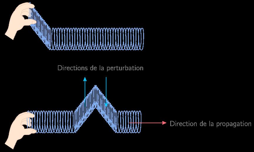 Propagation transversale d'une onde