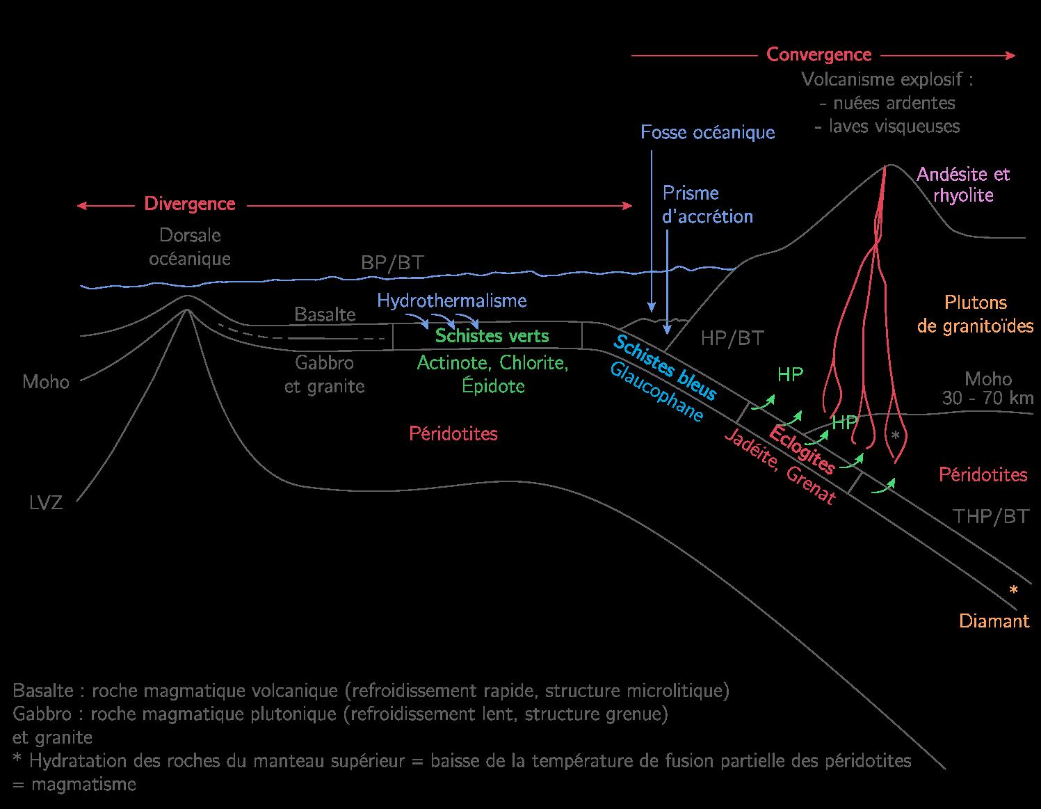 La subduction et le magmatisme associé