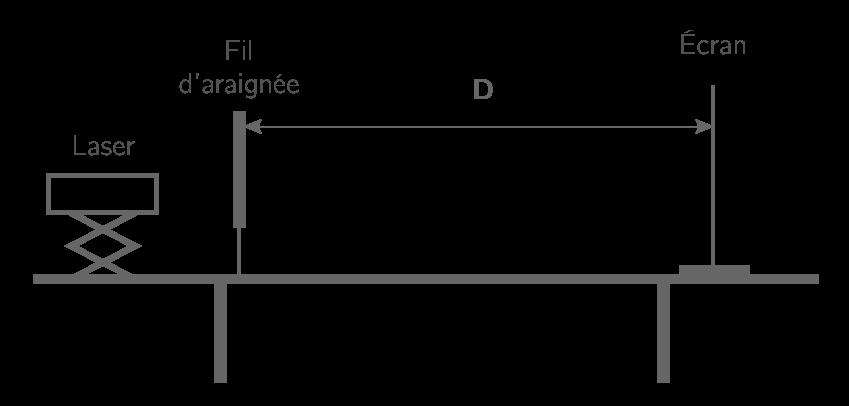Schéma de l'expérience en vue de profil