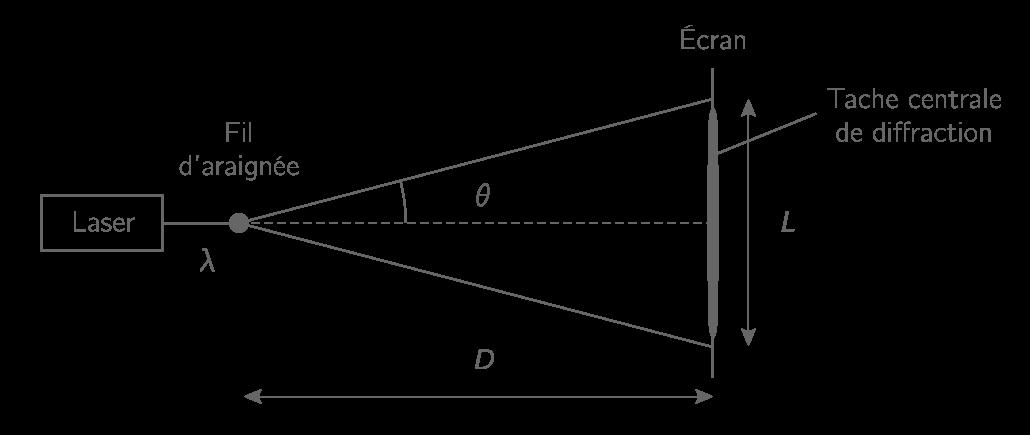 Schéma de l'expérience en vue de dessus, sans souci d'échelle