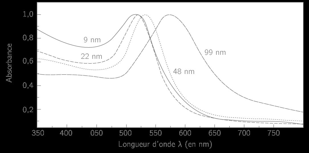 Spectre d'absorption UV-visible pour différentes tailles de nanoparticules d'or