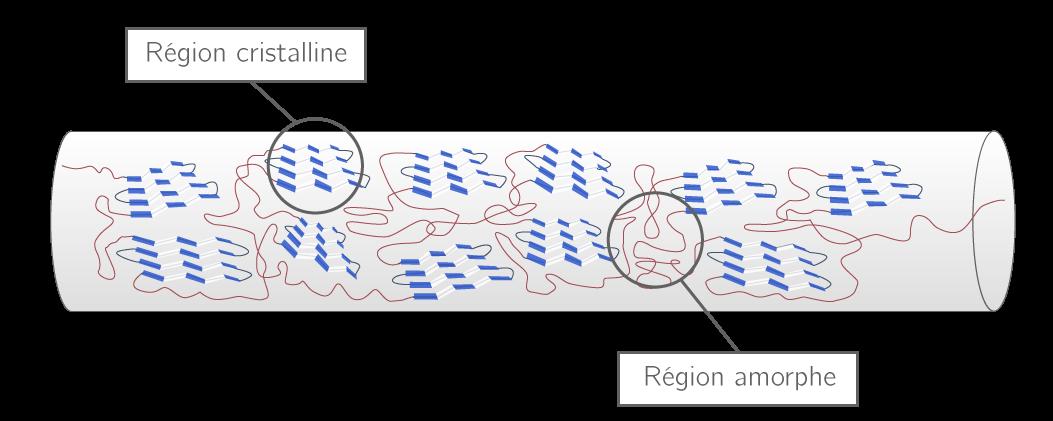 Structure de la soie d'araignée