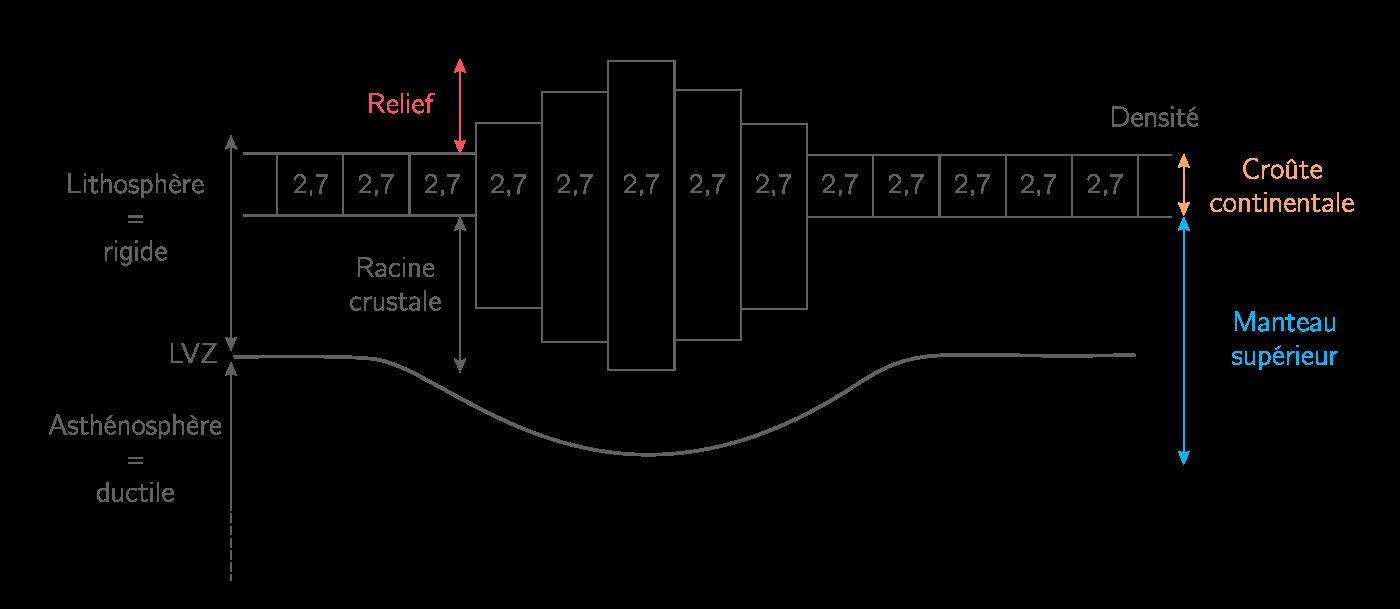 Modélisation de la structure de la lithosphère continentale grâce au principe de l'isostasie
