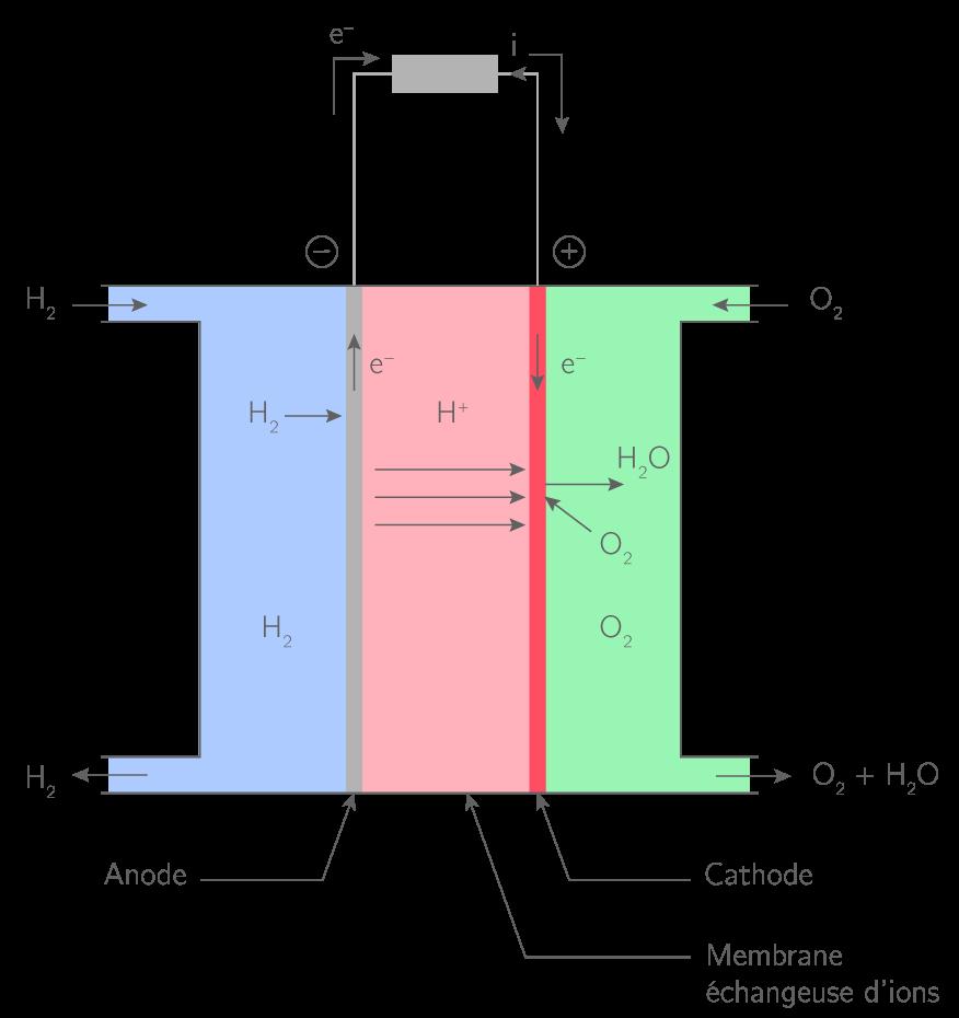 Représentation schématique d'une pile à combustible