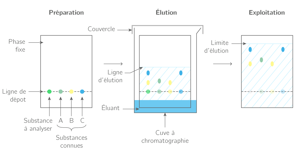 Chromatographie sur couche mince d'une substance verte