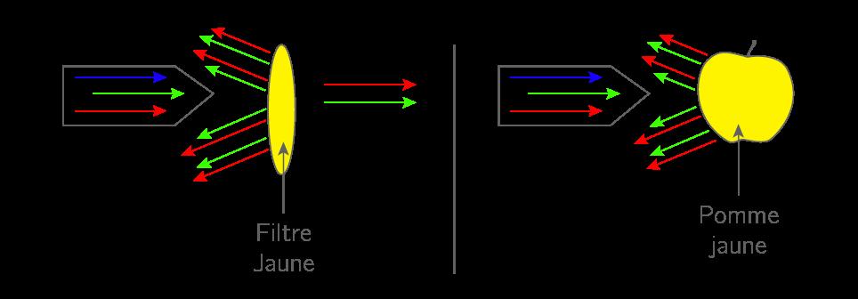 Diffusion et transmission de la lumière blanche par deux objets jaunes