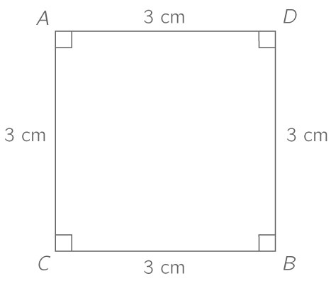 qcm image answer 2
