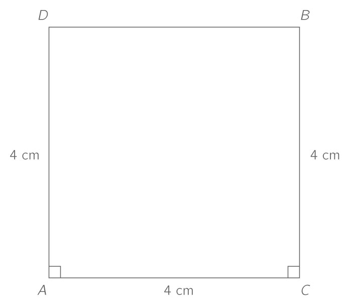 qcm image answer 0