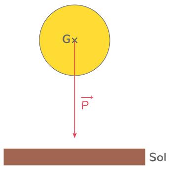 caractéristiques poids P