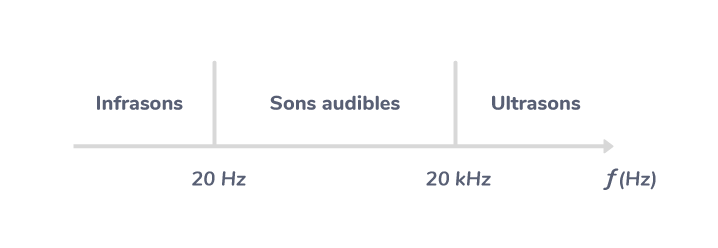 oreille humaine perception sons audibles infrasons ultrasons