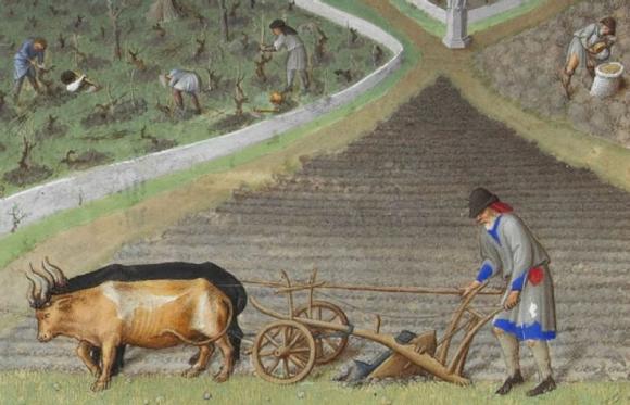 Un paysan laboure à la charrue