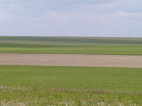 Paysage d'openfield au nord de Troyes, dans la Champagne crayeuse