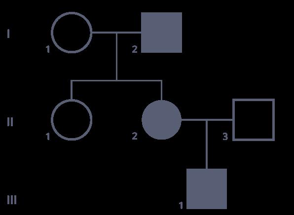 Un exemple d'arbre généalogiqueII−2 et III−1, fils de II−2, sont atteints. II−3, père de III−1 n'est pas atteint. I−1 et I−2, parents de II−2 ne le sont pas non plus.