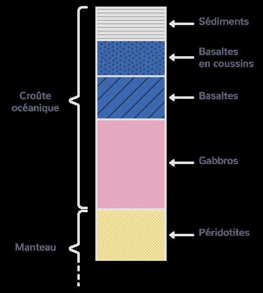 La structure des fonds océaniques