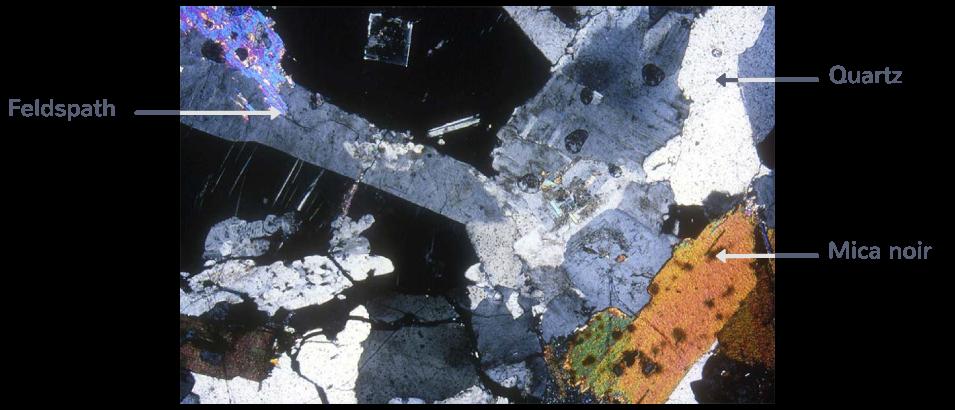 Observation au microscope polarisant d'une lame mince de granite