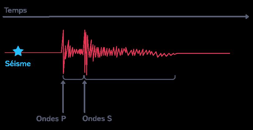 Un sismogramme, enregistrement des ondes sismiques à la suite d'un séisme