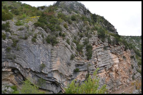Des plis dans des roches calcaires