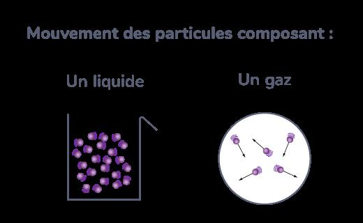 Mouvement des particules d'un liquide et d'un gaz