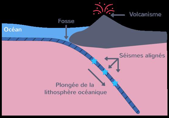 Coupe théorique au niveau d'une zone de subduction