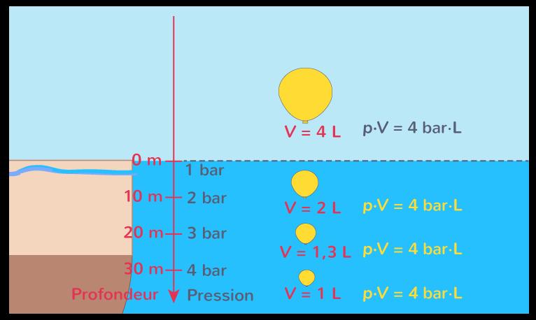 Évolution du volume d'un gaz en fonction de la profondeurImage à reproduire