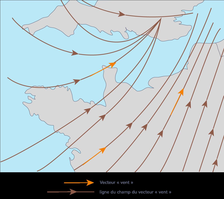 Lignes de champ associé au vent