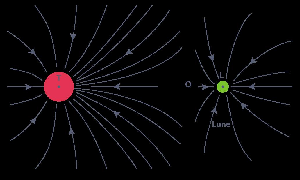 Lignes des champs de gravitation créés par la Terre et la Lune