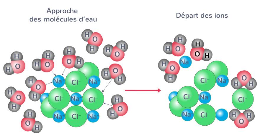 Dissociation des ions sodium Na+ et chlorure Cl− du sel dans l'eau