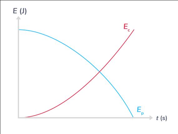 Variations des énergies cinétique et potentielle de pesanteur lors de la chute libre d'une balle