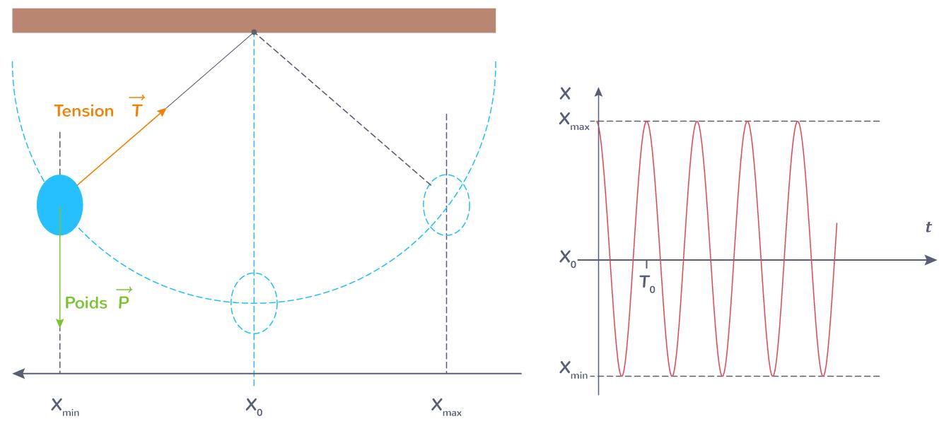 Oscillations d'un pendule simple