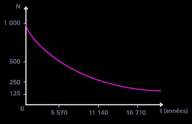 Décroissance du nombre d'atomes de carbone 14