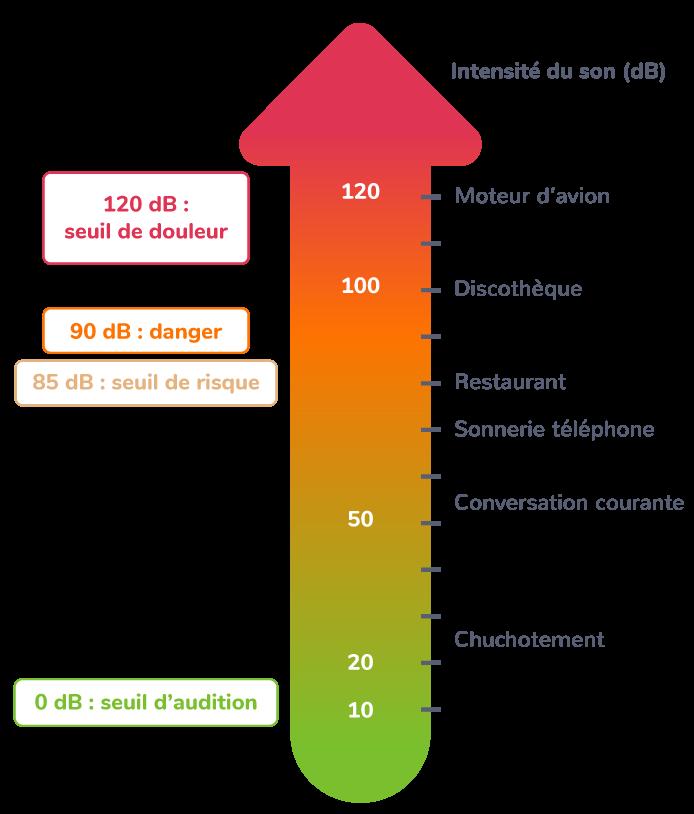 Différents seuils d'intensité sonore