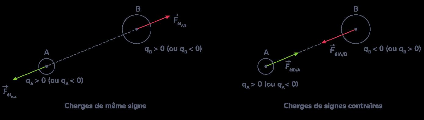 Représentation des forces d'interaction électrostatiques