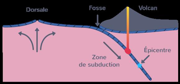 Genèse et disparition de la lithosphère océanique dans le cadre de la tectonique des plaques