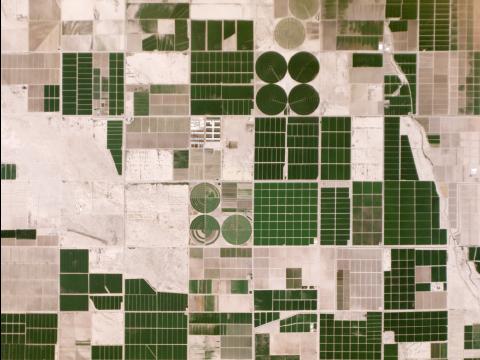 Terres irriguées au milieu du désert d'Arizona, États-Unis