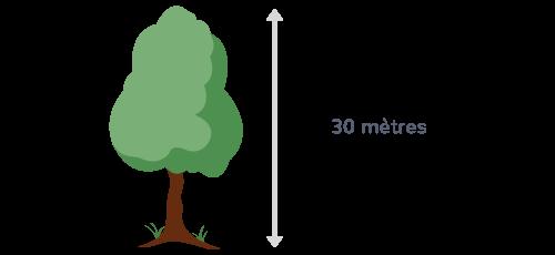 unités de longueur mesurer