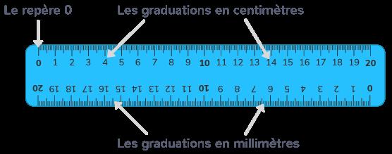 mesurer segments millimètres centimètres instrument règle