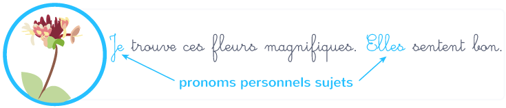 pronoms personnels sujets singulier pluriel