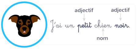 adjectif qualificatif information nom placement devant derrière