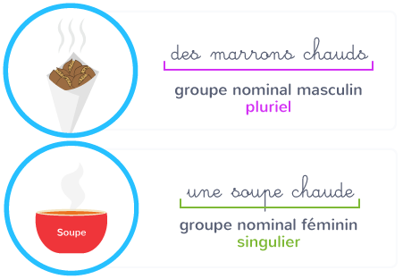 accord nombre groupe nominal
