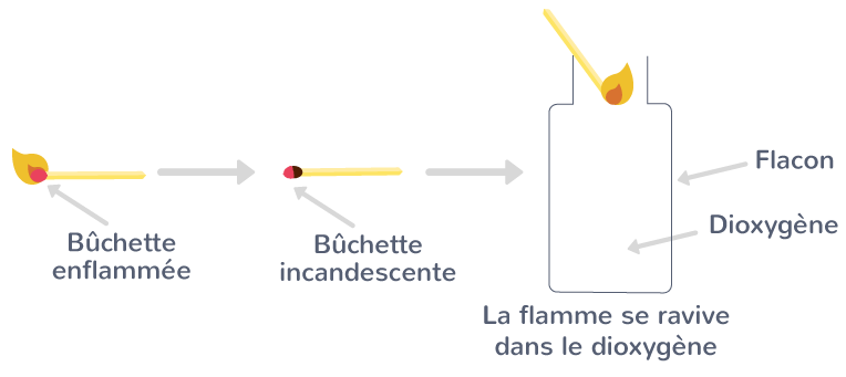 Dans le flacon de dioxygène, la braise de la bûchette incandescente prend feu.