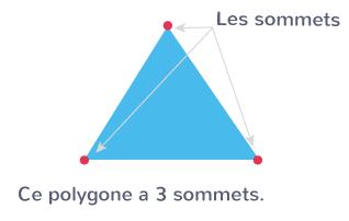 extrémités côtés polygones sommets