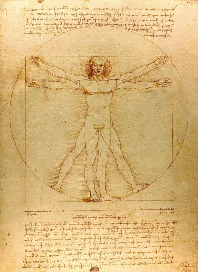 L'Homme de Vitruve dessiné par Léonard de Vinci