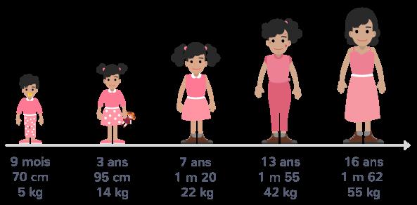 définition croissance naissance âge adulte corps transformer