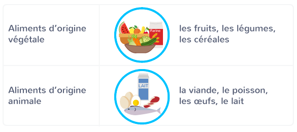 classement aliments deux catégories