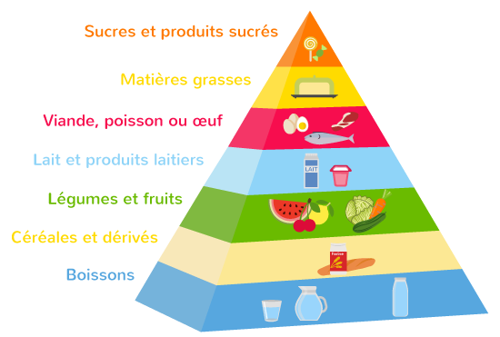 aliments rôles différents santé bâtisseurs énergétiques protecteurs
