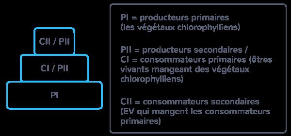 matières organiques biomasse