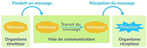 définition communication animale