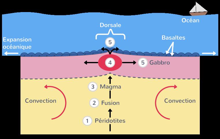 mise en place lithosphère océanique