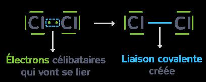 deux atomes chlore lier commun électron célibataire